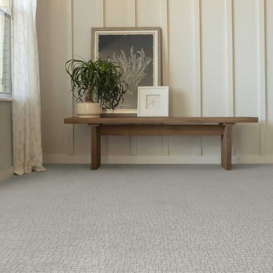 light grey carpet in entryway