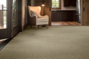 wall to wall carpet in entry way
