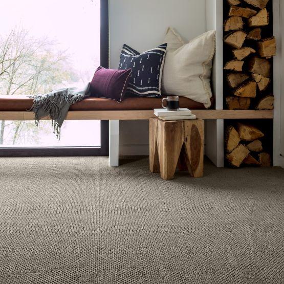 warm grey carpet in living room