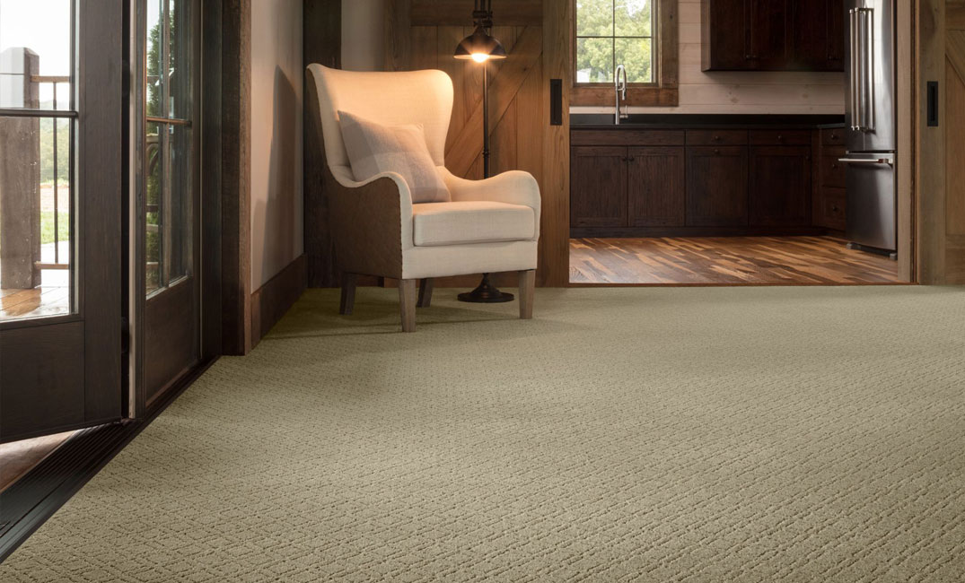 textured tan carpet in entryway
