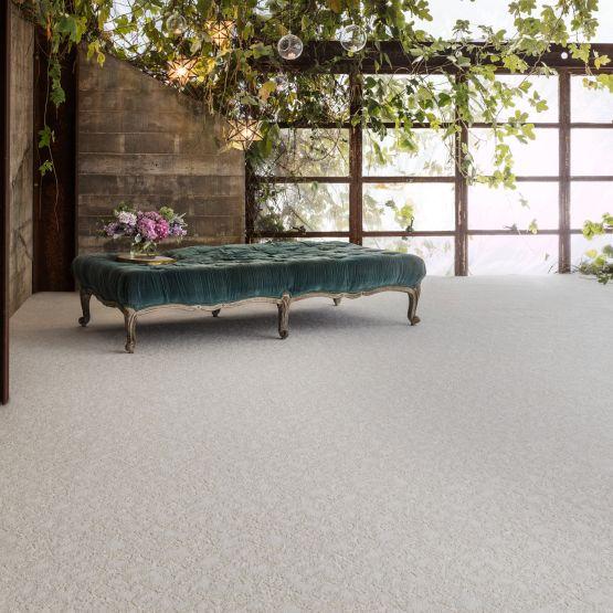 light grey carpet in living room