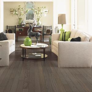 dark brown hardwood floor in living room