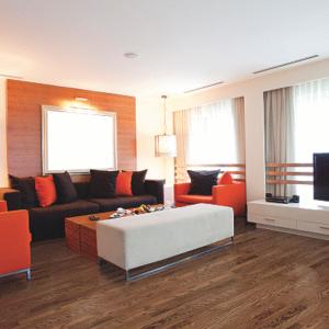 brown hardwood floor in living room