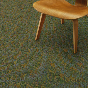 dark green commercial carpet with wood chair