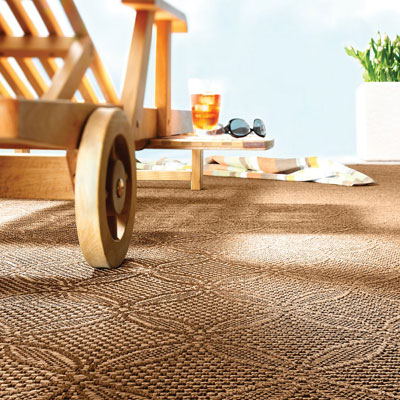 brown pattern indoor/outdoor rug