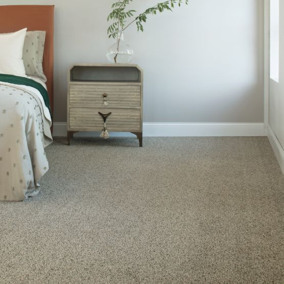warm grey carpet in bedroom