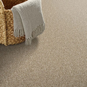 tan commercial carpet with basket